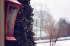 Vue d'hivers Photo stock