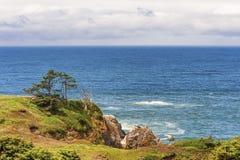 Vue d'horizon de tout en haut de tête de Yaquina Images libres de droits