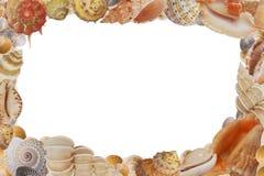 Vue d'interpréteur de commandes interactif de mer photographie stock