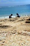 Vue d'océan Cabo San Lucas, Mexique Photos libres de droits