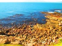 Vue d'océan rocheuse de côte Images libres de droits