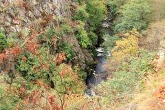 Vue d'oeil de ` d'oiseaux de la vallée de la rivière présagée Images stock