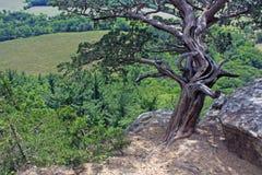 Vue d'oiseau-oeil de roche de Gibralter Image libre de droits