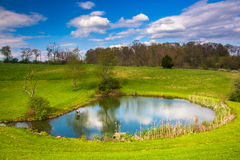 Vue d'un étang dans le comté de York rural, Pennsylvanie image libre de droits