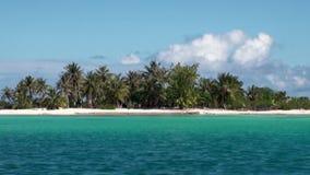 Vue d'un bateau mobile sur la plage et les palmiers de sable sur le fond de l'océan clips vidéos