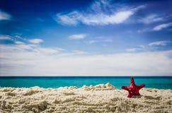 Vue d'un beau littoral Image libre de droits