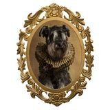 Vue d'un chien dans le style de la Renaissance illustration libre de droits