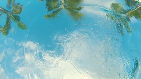 Vue d'un fond d'une piscine sur des palmiers et d'un petit enfant nageant au-dessus de la caméra clips vidéos