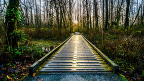 Vue d'un pont de promenade sur Brea Island, Colombie-Britannique, Canada photos stock