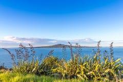 Vue d'une île volcanique par l'herbe Images libres de droits