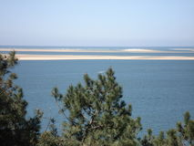 Vue d'une dune de Pilat avec des pins avant photo stock