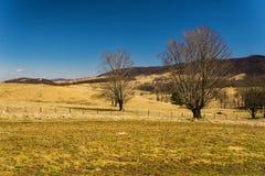 Vue d'une ferme en vallée bleue d'herbe image libre de droits