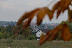 Vue d'une maison par les feuilles image stock