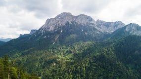 Vue d'une taille à une gamme de montagne avec les arbres coniféres Photo libre de droits