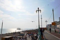 Vue dans éclairé à contre-jour à la plage et à la mer près de la tour d'observation British Airways i360 et au pilier occidental  photo libre de droits