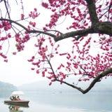 Vue dans la brume de Xihu Images libres de droits