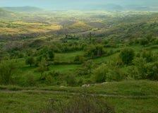 Vue dans la montagne de Rhodope, Bulgarie Image libre de droits