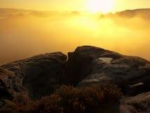 Vue dans la vallée brumeuse profonde au-dessus des touffes de bruyère Les crêtes de colline accrues de l'automne la campagne que  Images libres de droits