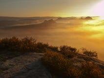 Vue dans la vallée brumeuse profonde au-dessus des touffes de bruyère Les crêtes de colline accrues de l'automne la campagne que  Images stock