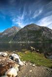 Vue dans le fjord norvégien Photo stock