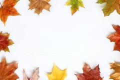 Vue dans le style d'automne Photographie stock