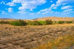 Vue dans le Turkmenistan Images stock