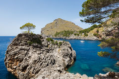 Vue de baie de SA Calobra en Majorque Photographie stock libre de droits
