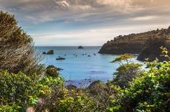 Vue de baie du Trinidad Photographie stock libre de droits