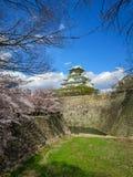 Vue de beau château d'Osaka par les branches de fleurs de cerisier, le fossé en pierre de banque et la pelouse d'herbe avec le fo Photos stock