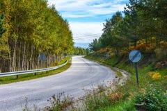 Vue de bord de la route de beau parc sur le ciel bleu Image stock