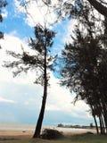 Vue de bord de la mer de nature à la baie Miri Sarawak Malaysia de Tanjung Lobang photographie stock