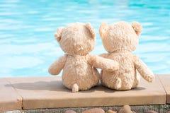 Vue de bord de piscine de deux ours de nounours Concept d'amour et de relations Photographie stock