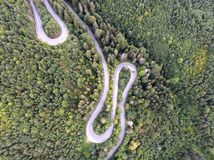 Vue de bourdon d'un chemin forestier vert photos libres de droits