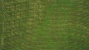 Vue de bourdon des prés employés pour couper l'herbe pour des animaux image stock