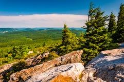 Vue de bouton impeccable, la Virginie Occidentale Photo libre de droits