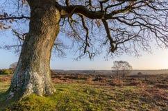 Vue de Bratley Photo libre de droits