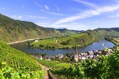 Vue de Bremm chez la Moselle avec Moselschleife photo stock