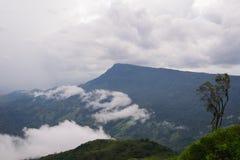 Vue de brouillard de Phu Thap Boek horizontale Photo stock