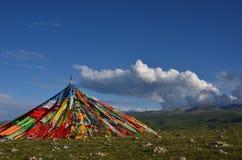 Vue de Buautifal le Lac Qinghai Image libre de droits