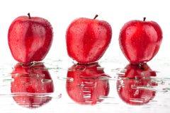 Vue de côté différente de pommes rouges sur la fin d'isolement par fond blanc vers le haut du macro image libre de droits
