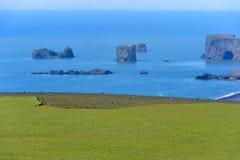 Vue de côte sud chez Dyrholaey, Islande Image stock