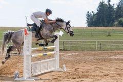 Vue de côté de cavalier sautant un cheval rouan Photo stock