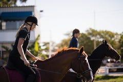 Vue de côté des chevaux d'équitation d'amis à la grange Photographie stock