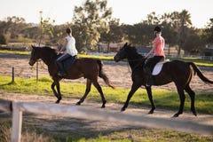 Vue de côté des chevaux d'équitation femelles d'amis contre le ciel Image stock