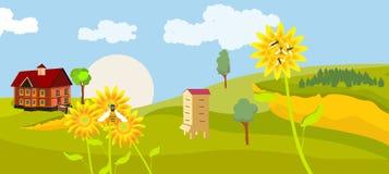 Vue de campagne, champs verts, peu de cottage, tournesols, ruche d'abeille Image libre de droits