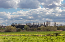 Vue de campagne d'Essex Photo libre de droits