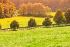 Vue de campagne de champ vert Horizontal de nature images stock
