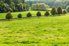 Vue de campagne de champ vert Horizontal de nature photos libres de droits