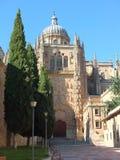 Vue de cathédrale de Salamanque de Calle Patio Chico Photos libres de droits