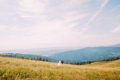 Vue de champ d'or d'été avec les deux jeunes romantiques marchant dessus Forest Hills majestueux sous le ciel ensoleillé stupéfia Photos stock